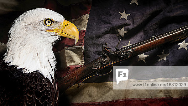 American eagle with american flag and revolutionary war rifle