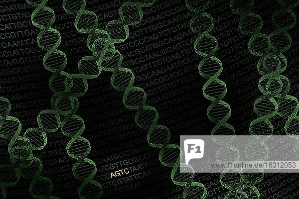 DNA-Helix auf schwarzem Hintergrund