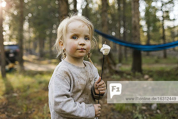 Portrait of girl (2-3) with marshmallow on stick in forest  Wasatch-Cache National Forest
