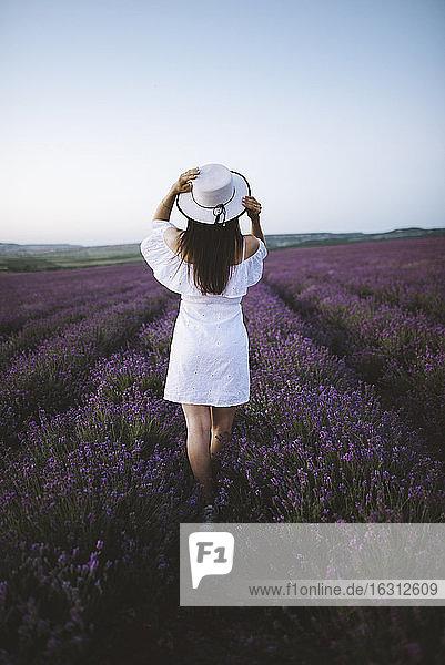 Frankreich  Frau in weißem Kleid im Lavendelfeld