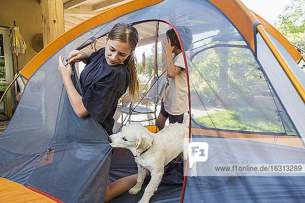 Teenagermädchen und ihr jüngerer Bruder bauen ein Zelt auf  ein süßer Welpe zerrt an der Zeltplane.