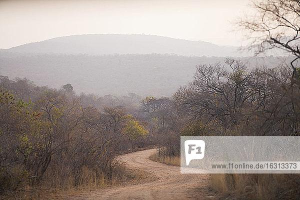 Blick entlang der kurvenreichen Landstraße  Südliches Afrika.