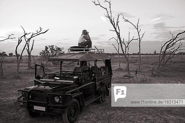 Frau  die auf einem 4x4 steht  der im Moremi-Reservat in Botswana geparkt ist.
