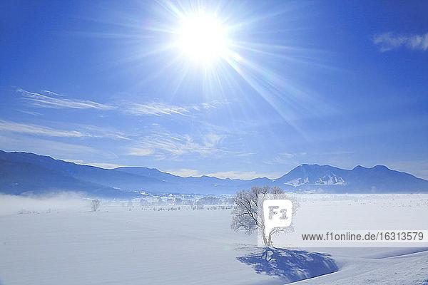 Nagano Prefecture  Japan