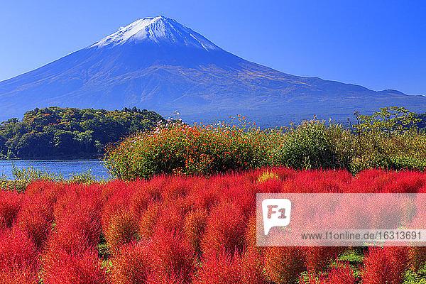 Yamanashi Prefecture  Japan