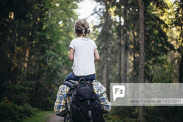 Rückansicht eines Vaters  der seine Tochter beim Waldspaziergang auf der Schulter trägt