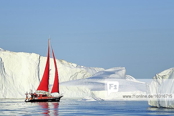 Red sailing boat in front of gigantic icebergs  Icefjord  UNESCO World Heritage Site  Disko Bay  Ilulissat  West Greenland  Greenland  North America