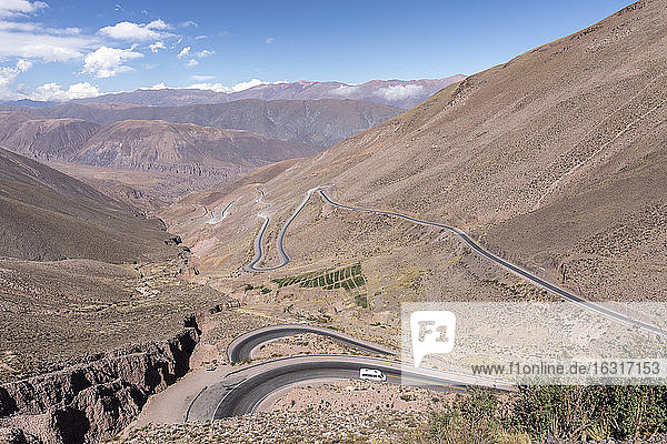 Route 52  a steep road leading to Piedra del Molino Pass  Los Cardones National Park  Salta Province  Argentina  South America