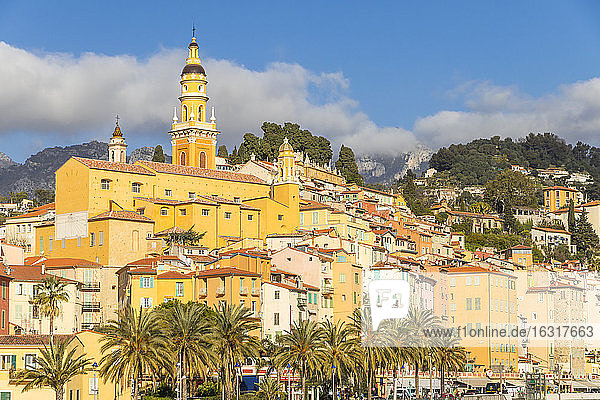 The old town with the Saint-Michel-Archange Basilica  Menton  Alpes Maritimes  Cote d'Azur  French Riviera  Provence  France  Mediterranean  Europe