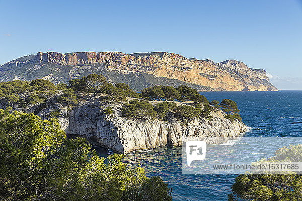 View over the Calanque de Port Pin and Cap Canaille  Calanques National Park  Cassis  Bouches du Rhone  Provence  France  Mediterranean  Europe