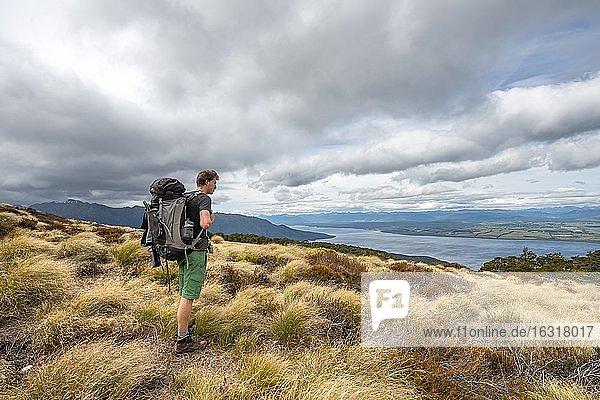 Hiker looks out over Lake Te Anau and Southfiord  Kepler Track  Fiordland National Park  Southland  South Island  New Zealand  Oceania