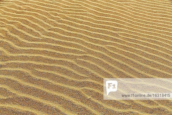 Sandstrukturen  durch Wellen und Wind erzeugt  Rippel am Strand Rauðisandur  Raudisandur  bei Patreksfjördur  Vestfirðir  Westfjorde  Island  Europa