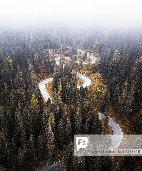 Luftaufnahme  kurvige Straße im Herbst mit Nebel  Passo di Giau  Italien  Europa