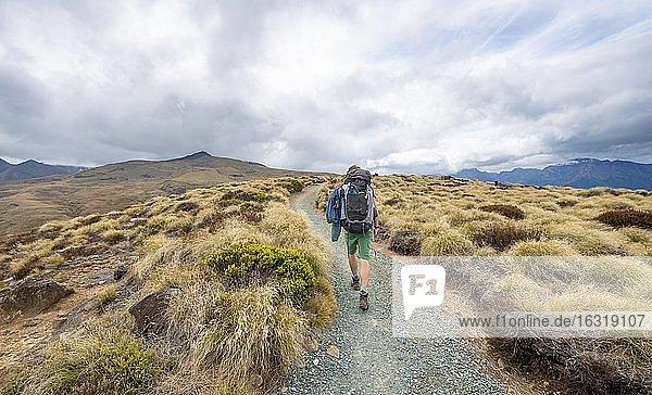 Hiker on Kepler Track  Fiordland National Park  Southland  South Island  New Zealand  Oceania