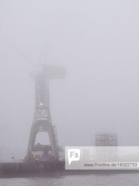 Germany  Hamburg  Port of Hamburg  Harbour crane and fog