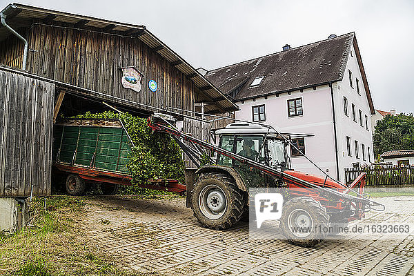 Germany  Bavaria  Attenhofen  travtor with hop at barn
