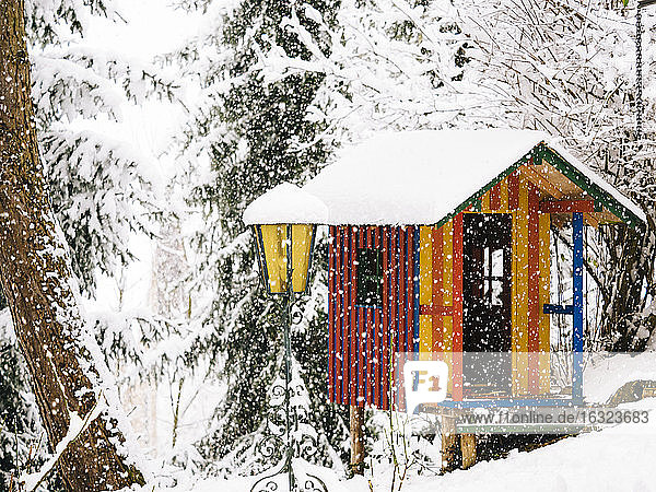 Germany  colorful wendy house in winter