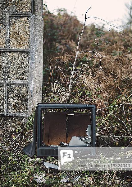 Spain  Galicia  Ferrol  broken Tv in a ruinous place