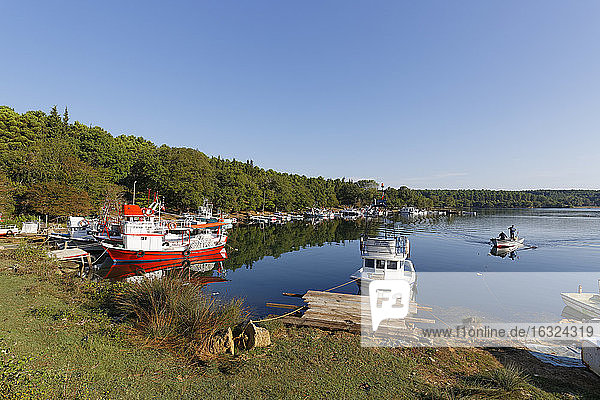 Turkey  Black Sea  Sinop  fishing boats at Hamsilos Bay