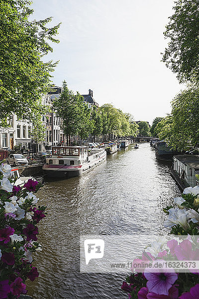 Netherlands  County of Holland  Amsterdam