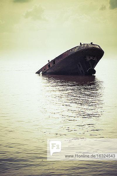 Germany  hamburg Ship wreck in water