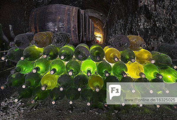 Austria  Lower Austria  Weinviertel  wine cellar