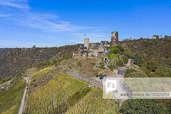 Germany  Rhineland-Palatinate  Mayen-Koblenz  Moselle  Alken  Thurant Castle and vineyards