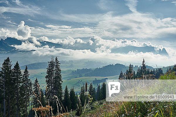 Seiser Alm  Dolomiten  Südtirol  Italien  Europa
