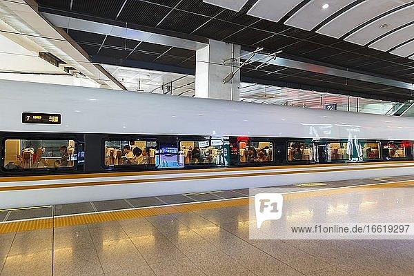 Train Fuxing High Speed Train High Speed Train HGV Beijing Beijing South Railway Station  Beijing  China  Asia