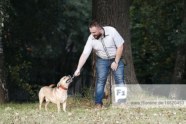 Mid adult man playing with dog in park