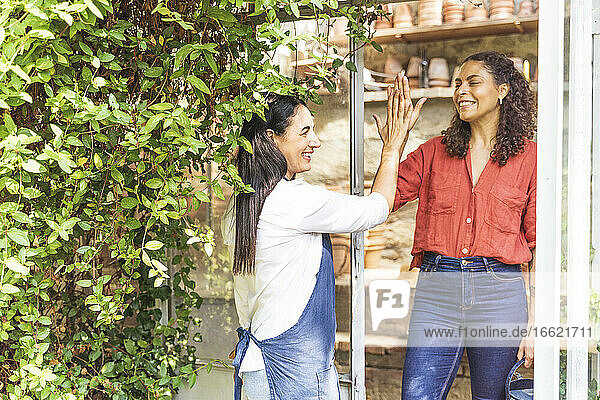 Female friends giving high five while standing in back yard