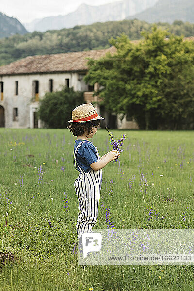 Boy holding flower while standing in meadow