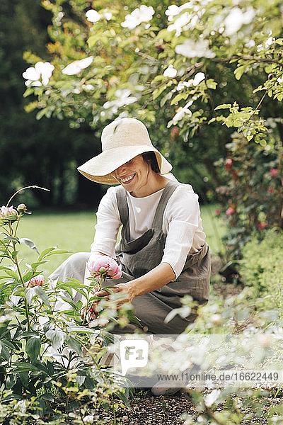 Woman smiling while picking rose flower in garden