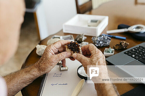 Elderly man doing research on fossil and mineral at home