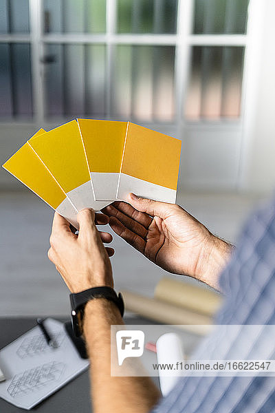 Architect holding color swatch while standing at office