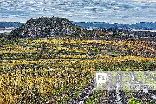 Scenic view of grassy landscape against cloudy sky  Krabbe Peninsula  Russia