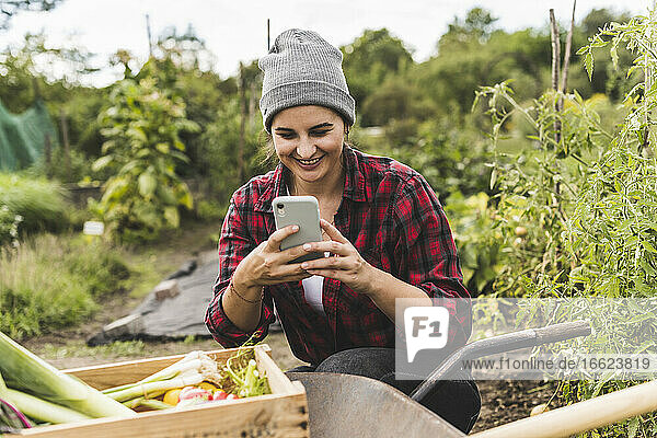 Young woman using mobile phone while crouching by wheelbarrow in vegetable garden