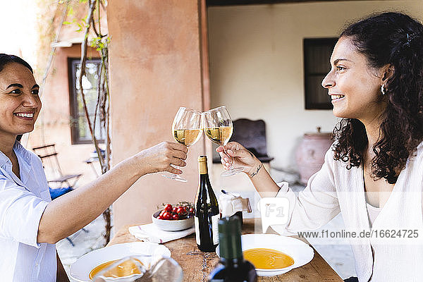 Friends toasting wineglass while sitting by dining table at back yard