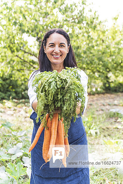 Smiling mature woman holding fresh harvested carrots from vegetable garden
