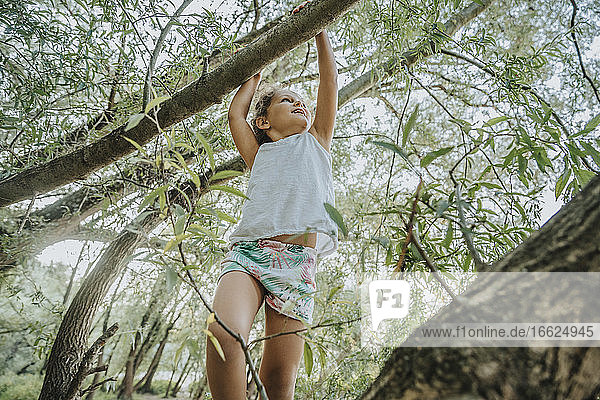 Low angle view of cute little girl hanging on willow tree