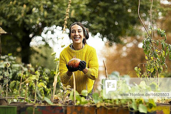 Smiling woman harvesting pumpkin while standing at urban garden