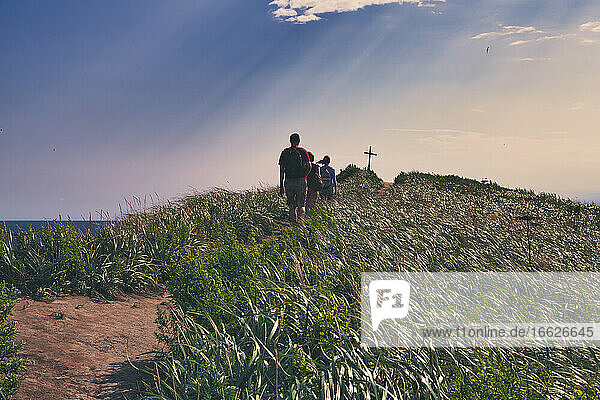 Friends hiking amidst plants towards summit cross on mountain peak during sunset