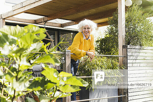 Smiling woman leaning on railing while standing in balcony at home