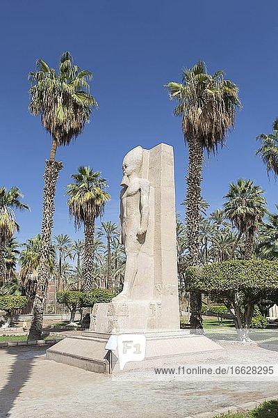 Statue of Ramesses II  1279-1213 BC circa  red granite  Mit Rahina museum  Memphis  Egypt  Africa