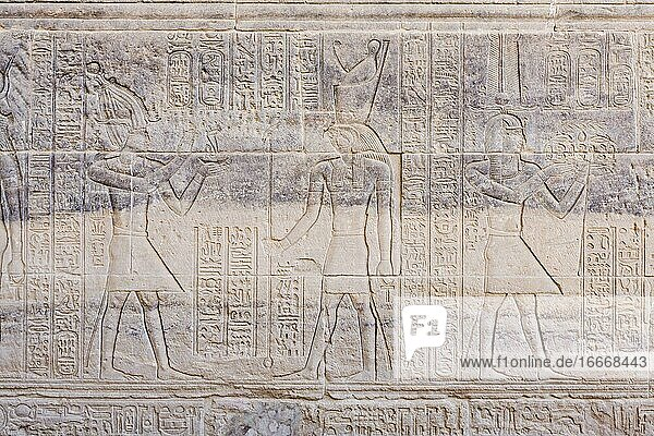 Reliefs at Philae temple  Aswan  Egypt  Africa