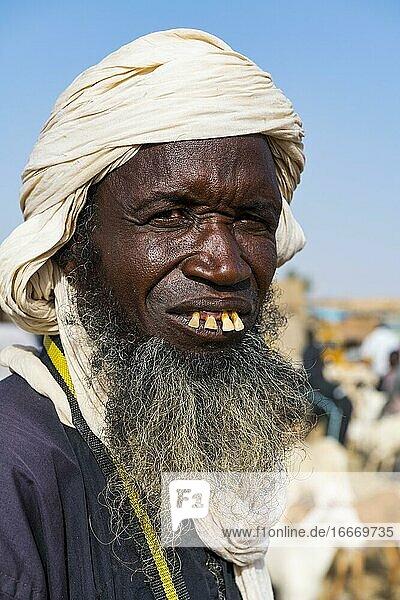 Tuareg at the animal market  Unesco world heritage sight Agadez  Niger  Africa