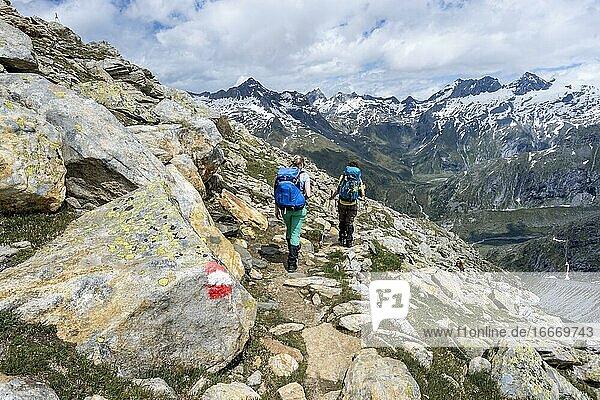 Hiker on marked hiking trail  descent from Schönbichler Horn to Berliner Hütte  behind Schwarzenstein and the Schwarzensteinkees glacier  Berliner Höhenweg  Zillertal Alps  Zillertal  Tyrol  Austria  Europe