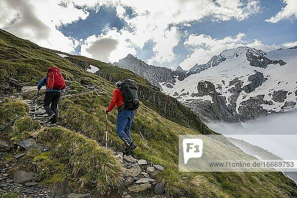 Hikers in front of snow-covered mountain peaks  Furtschaglspitze and Großer Möseler  ascent to Schönbichler Horn  Furtschaglkees glacier  Berliner Höhenweg  Zillertal Alps  Zillertal  Tyrol  Austria  Europe
