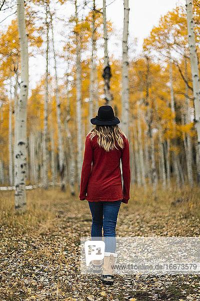 Rückansicht einer Frau beim Spaziergang im Wald im Herbst