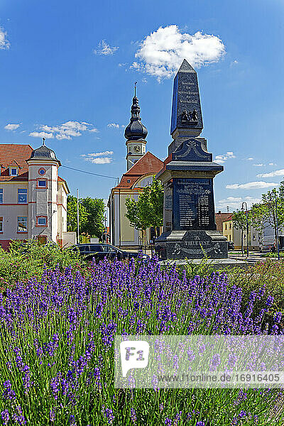 Lavendel  Blüten blau Johannes Fink Grundschule Böhl  Protestantische Kirche Böhl